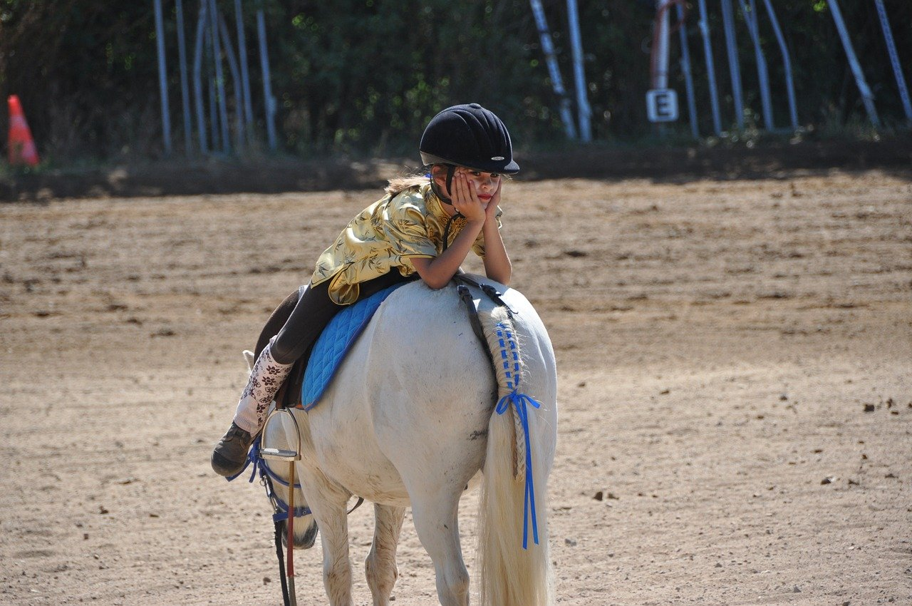 Andare a cavallo meolo